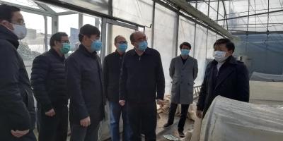 市委副书记徐劼检查调研农产品保供和 农村疫情防控工作